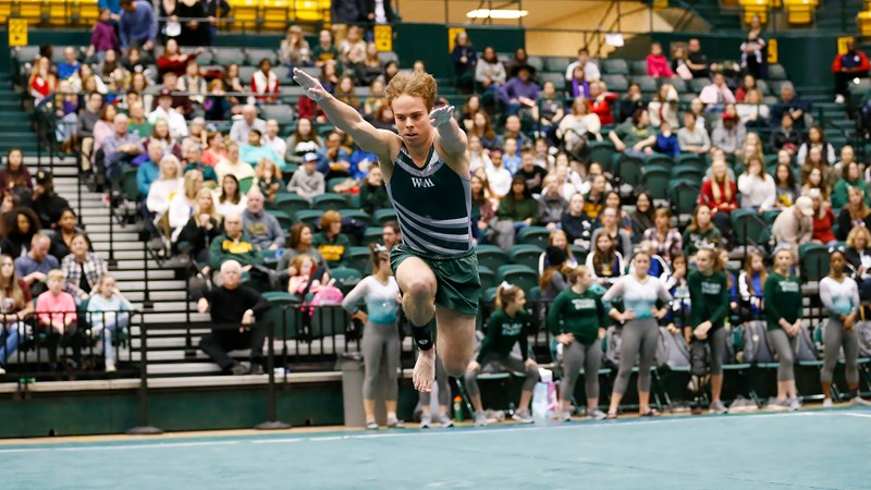 W&M Men's Gymnastics Defeats Temple at State Open